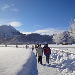 Laad je batterijen op met een deugddoende winterwandeling. - © Tourismus Oberstdorf | ek photo