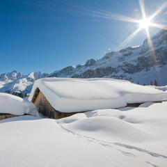 Nächste Woche wird es richtig kalt - ob es aber auch so winterlich wird, steht noch nicht ganz fest - © Johannes Netzer_Fotolia.com