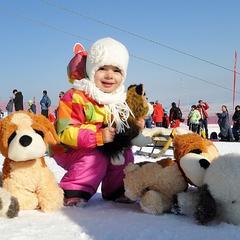 Do Tatranskej Lomnice mieria Snežné psy - ©Marek Hajkovský