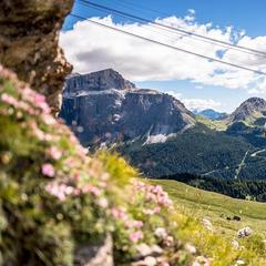 Už jste někdy viděli Dolomity v létě? - ©Val di Fassa Lift Facebook