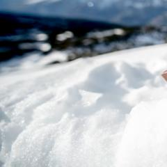 Una montagna di cioccolato sulle nevi della Paganella - ©Visitdolomitipaganella.it