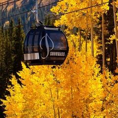 Aspen gondola in fall, CO